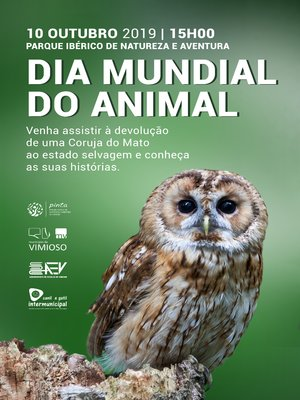 Dia do animal 2019 1 300 400